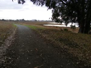 path_at_pt_pinole